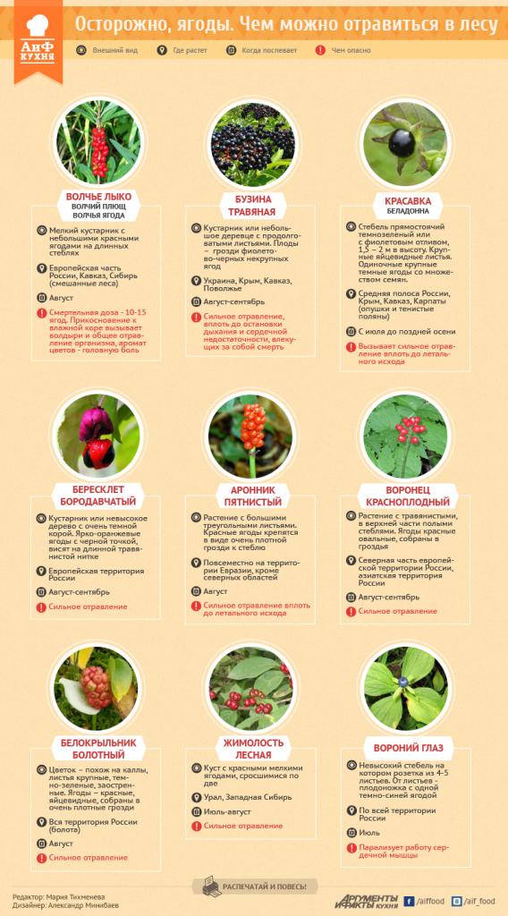 Инфографика Ч.1.2